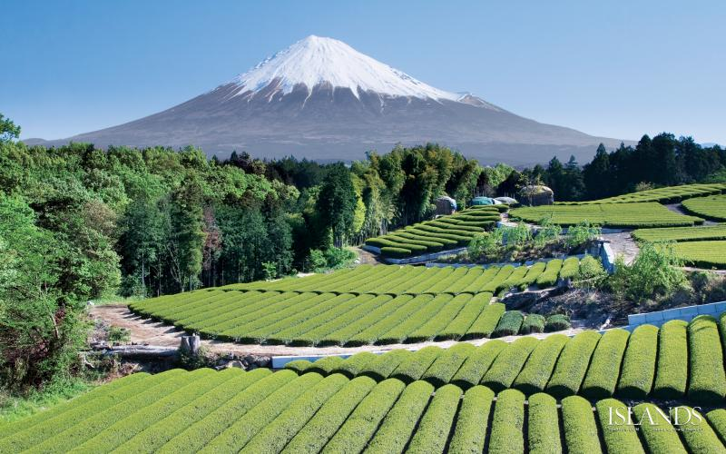 Here is a picture of a mountain and fields in Japan.